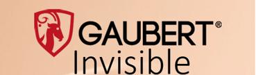 Gaubert-Invisible