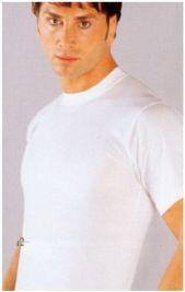 Beeren 100% T shirt met elastiche rondbreiboord  extra lang